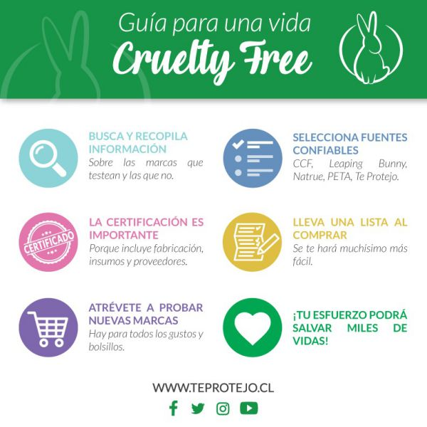 guia para una vida cruelty free 2017